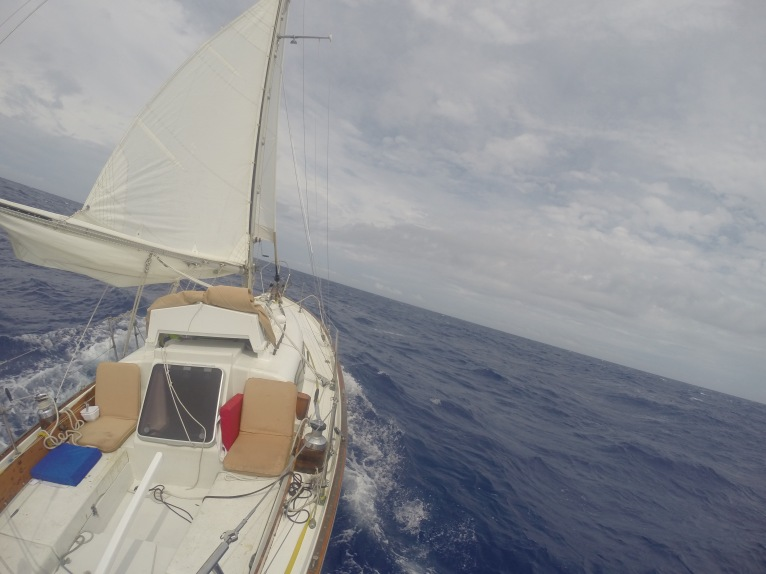 New design at sea